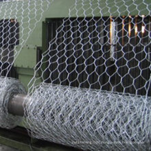 "2"" Hexagonal Wire Mesh"
