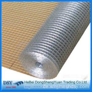 China 1/2 3/4 Zoll verzinkte geschweißte Drahtgewebe Hersteller