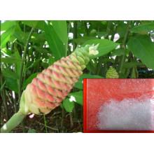 Zingiber Zerumbone Smith Extract, Nº CAS: 471-05-6, Zerumbone 99%