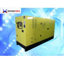 50KVA Weifang Conjunto Gerador R4105ZD Motor
