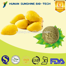 100% pure fruit Fresh mango fruit powder