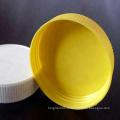 Moule en plastique expérimenté de fermeture de chapeau de ménage d'usine de moule en plastique / moule en plastique pour la fermeture de chapeau