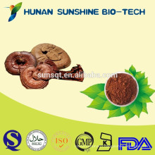 natural product lowering blood pressure health-improving product sleep quality reishi mushroom extract