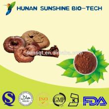 produto natural de redução da pressão arterial de saúde melhora a qualidade do sono do produto reishi cogumelo extrato