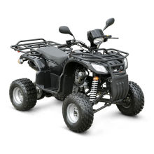 Mini EEC 150CC ATV