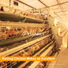 A Type Galvanized Automatic Chicken Layer Cage for Sale