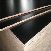Colle imperméable à l'eau 12mm 15mm 18mm Poplar ou Hardwood Core Noir ou Noir Confinement Marine pour la Construction