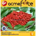 Acmefate высшего сорта Ningxia Природная сухая цена на ягодку