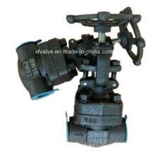 Кованые А105 углеродистая сталь DIN резьбой Клапан ДНЯО