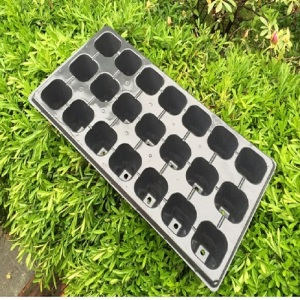 21 Holes PP Rice Seedling Tray