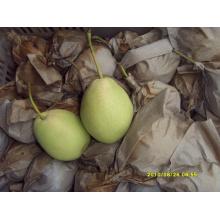 Хрустящая и сладкая зеленая груша
