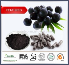 100% Natural Pure Acai extract/Acai berry extract powder/acai powder