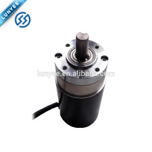 24V Low Voltage Micro Brushless Planetary DC Gear Motor
