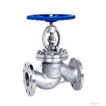 titanium piston globe valve
