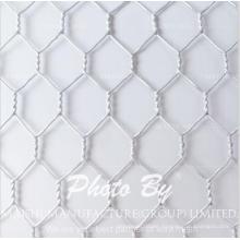 25mm Doppel Galvanisierte Hähnchen Draht Hexagonal Mesh Netting