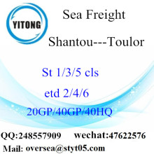 Shantou Port Sea Freight Shipping To Toulor