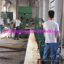"42"" Log Saw Cutting Machine CNC Automatic Wood Bandsaw"