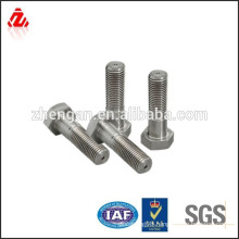 Stainless steel hex head bolt