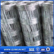 Hot-Dipped Galvanized Cattle Fence for China
