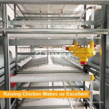 Máquina da remoção do estrume da gaiola da galinha da correia transportadora para a gaiola de grelha