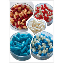 Best Hard Gelatin Capsule Capsule From Us