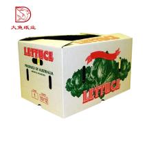 Novos tipos diferentes de caixa de embalagem de vegetais decorativos