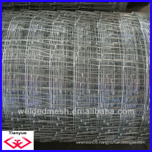 China Factory electro galvanized/hot dipped galvanized/PVC cattle fence(factory)                                                                         Quality Choice