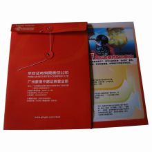 Printed Color Paper Gift Shopping Bag (SW406)