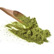 Moringa oleifera powder from india