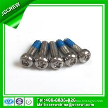 Tamper-Resistant Pan Head Stainless Steel Screw