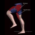 Équipement de conditionnement physique équipement/salle de Gym pour multi-Jungle 8-Stack (FM-2006)