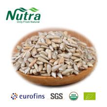 Organic Sunflower Seeds Kernels