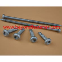 Roofing Screw Ruspert Screw Tek Screw Buildex Screw