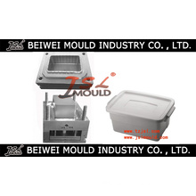 Injection Plastic Storage Case Mould Manufacturer