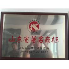 Relaince Aluminium China Berühmte Marke in Aluminium / Aluminium Profil