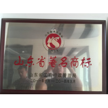 Relaince Aluminum China Famous Brand in Aluminium / Aluminium Profil