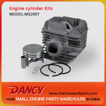 MS200T replacement cylinder kits