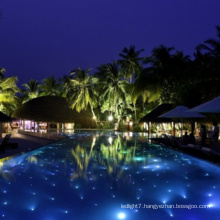 Led Fiber Star Floor Pool Lights
