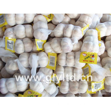 Jinxiang New Crop Fresh Garlic
