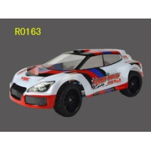 1/16 scale 4WD brushed electric rc rally car, Unique design of RC vehicle