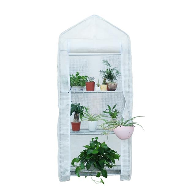 Stainless Steel Structure Mini Garden Greenhouse For Plants