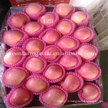 Yantai Fruits frais pomme de fuji rouge meilleur prix exportateur en Chine