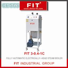 Entièrement automatique chauffée électriquement chaudière à vapeur (FIT3-0,4-1C)