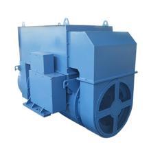 Low Voltage Electric Power IP55 Generator