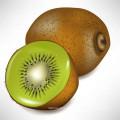 Harmonias Vegetais / Reguladores de Crescimento Vegetal / Inibidores do Crescimento Vegetal