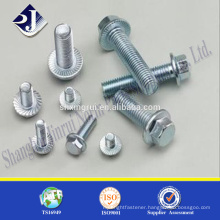 Trade assurance High strength din6921 flange hex bolt