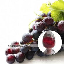 Extrait de peau de raisin - Peau de raisin Couleur rouge