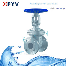 API 6D Flanged Wedge Gate Valve Stainless Steel