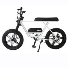 EEC & COC Certificate Fat tire Cheap Electric mountain bike for Men