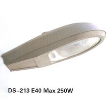 Street Light (DS-213)